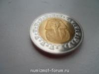 Египетский фунт - SAM_1012.JPG