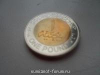 Египетский фунт - SAM_1011.JPG